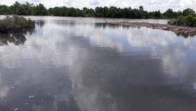 Nguồn nước ô nhiễm từ một nhà máy tại Khu công nghiệp Hòa Trung thải ra sông (ảnh chụp ngày 3-7).