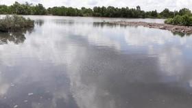 Nguồn nước ô nhiễm phía sau một nhà máy thẳng ra sông