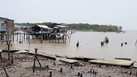 Cấp bách đầu tư các công trình phòng chống sạt lở bờ biển ở Cà Mau