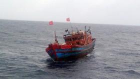 Phát hiện 3 thi thể trong khoang hầm tàu cá trôi dạt trên biển