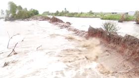 Kiên Giang tập trung khắc phục vỡ đê biển Tây