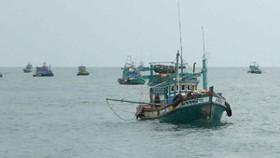 Tình trạng tàu cá vi phạm tại vùng biển nước ngoài vẫn còn phức tạp