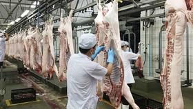 Dây chuyền sản xuất thịt heo ở Công ty Vissan