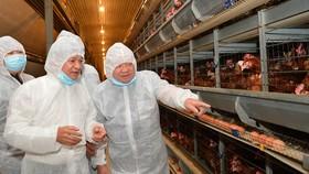 Chủ tịch Hội Nông dân Việt Nam Thào Xuân Sùng thăm trang trại gà của Công ty Ba Huân. Ảnh: VIỆT DŨNG