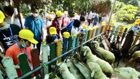 Các em học sinh thích thú tham quan thú nuôi tại Thảo cầm Viên ngày 26-12