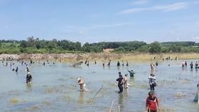 Hàng trăm người đổ xô bắt cá ở đập thủy điện Trị An