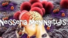 Vietnam to store vaccine for meningitis disease