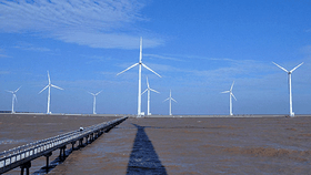 A wind power station in the southwest province of Bac Lieu. (Photo: SGGP)