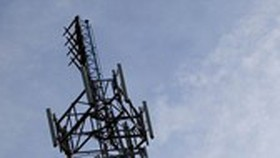 Police to investigate telecommunications network monopoly in Phu My Hung area