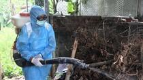Dengue cases drop in Ho Chi Minh City