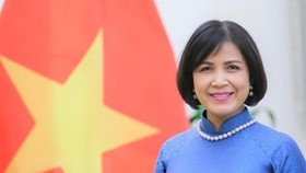 Ambassador Le Thi Tuyet Mai, Head of Vietnam's Permanent Mission to the United Nations (UN), World Trade Organisation (WTO) and other international organisations in Geneva (Photo: VNA)