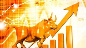 Unprecedented surge of new accounts in stock market