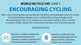 World Bicycle Day encourages cycling