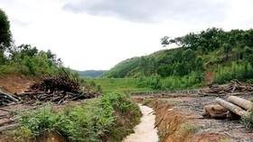 Landslide along sea dyke kills 19 people, leaves many missing in Ca Mau