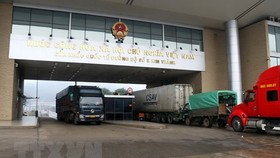 Over 6,500 tons of farm produce exported via Lao Cai border gate