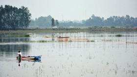 Mekong Delta to see peak of flood season in late September