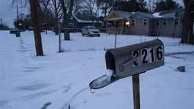Snow storm in Texas (Photo: VNA)