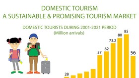 Domestic tourism a sustainable and promising market
