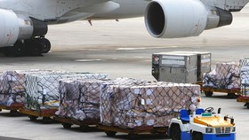 Air freight output rises 15 percent year on year