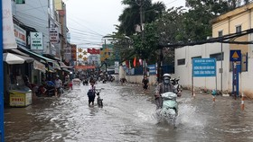 Mekong Delta able to reach levels 1-2 flood peak in 2021