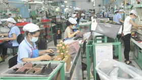 Tien Giang Province reports PM on proposal of 19 enterprises
