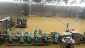 Tổ hợp nhà máy chế biến thịt gà lớn nhất Việt Nam