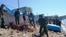 """Quảng Ngãi: 2.000 người tham gia chiến dịch """"Hãy làm sạch biển"""""""
