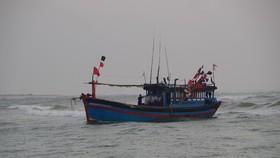 Tàu cá Lý Sơn cứu vớt 32 ngư dân nước ngoài gặp nạn trên biển