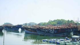 Quảng Ngãi: Ngư dân rơi xuống biển mất tích