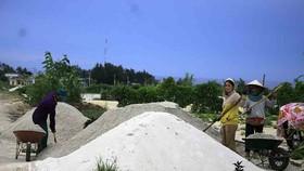 Nhiều ý kiến xử lý đất thải từ hoạt động sản xuất nông nghiệp ở đảo Lý Sơn