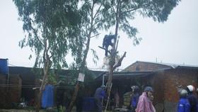 Quảng Ngãi: Đảm bảo an toàn nhất là khu vực ven sông Trà Bồng