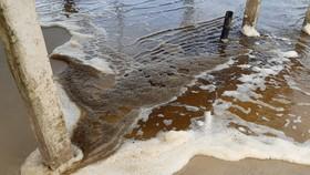 Quảng Ngãi:  Bãi tắm Khe Hai, nước biển chuyển màu nâu đen, nổi bọt