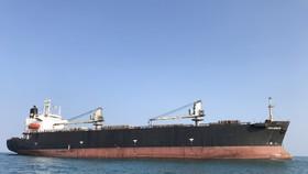 Tăng cường kiểm soát dịch bệnh đối với các tàu nước ngoài xuất, nhập cảng Dung Quất (Quảng Ngãi)