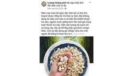 Quảng Ngãi đề nghị Bộ Công an truy tìm tài khoản Facebook tung tin tỏi Lý Sơn nhiễm thuốc trừ sâu