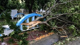 Quảng Ngãi: Thiệt hại sau bão số 6, hàng trăm nhà, trường học bị tốc mái hư hỏng, bị thương 9 người