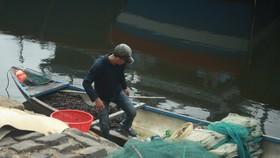 Quảng Ngãi khẩn trương neo trú tàu thuyền tránh trú bão số 9