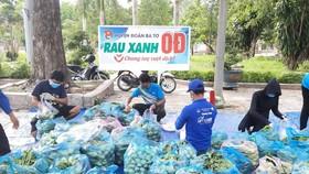 Quảng Ngãi: Nông dân sẵn lòng cho cả ruộng rau hỗ trợ nơi khó khăn do dịch Covid-19