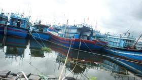 Quảng Ngãi cấm tàu thuyền ra khơi khi gió mạnh cấp 6 trở lên