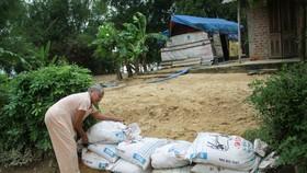 Quảng Ngãi: Lũ vừa tan lại lo mưa lớn do ảnh hưởng áp thấp nhiệt đới
