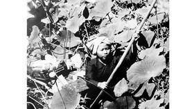 Cuộc tổng tiến công và nổi dậy Xuân Mậu Thân 1968: Sự thống nhất giữa ý Đảng, lòng dân