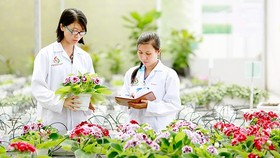 Hỗ trợ 100% lãi suất cho vay sản xuất nông nghiệp ứng dụng công nghệ cao