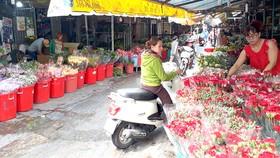 Sao vẫn chưa dời được 2 chợ hoa sỉ?
