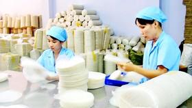 Nông nghiệp TPHCM phát triển theo mô hình nào? - Bài 2: Ưu tiên phát triển kinh tế tập thể