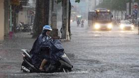 Từ chiều nay 25-11, TPHCM mưa to đến 200mm, có thể ngập lụt