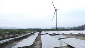 Tổ hợp điện gió và điện mặt trời của Tập đoàn Trung Nam tại Ninh Thuận