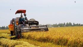 Cơ giới hóa nông nghiệp, nâng cao giá trị sản phẩm