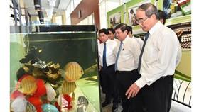 TPHCM xây dựng bộ tiêu chí nông thôn mới phù hợp với quá trình đô thị hóa