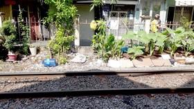Trồng rau ở hành lang an toàn đường sắt