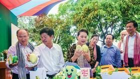 """Chủ tịch Quốc hội Nguyễn Thị Kim Ngân (thứ 3 từ trái qua) ấn tượng với sản phẩm xoài của mô hình """"cây xoài nhà tôi"""" của Đồng Tháp."""