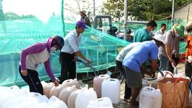 Đồng bằng sông Cửu Long dồn sức cứu hàng chục ngàn hécta cây ăn trái
